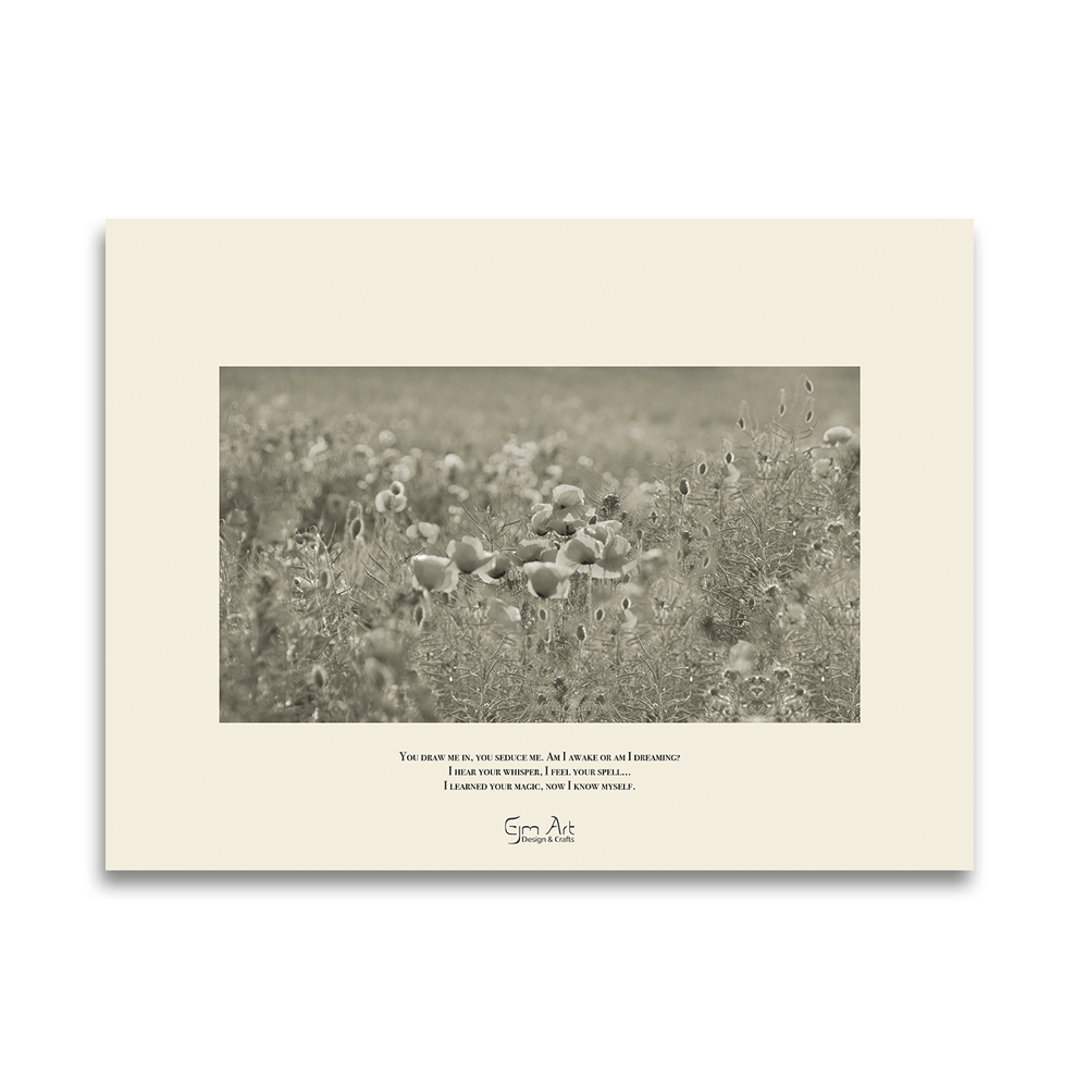 """Silver Cloud photo art. Poppies flowering on a summer day seducing me into a romantic mood. The poster comes with a poem. Dimensions: 24""""x18"""" (61cm x 45,7cm)"""